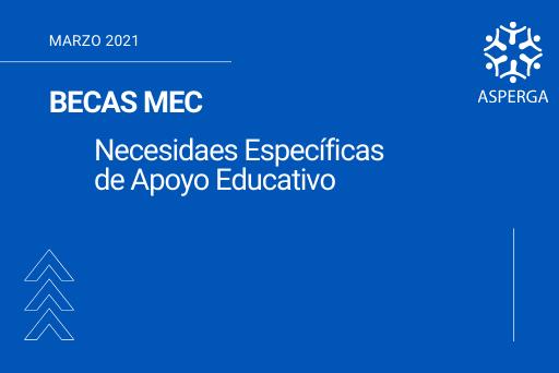 BECAS MEC – Necesidades Específicas de Apoyo Educativo (video informativo)